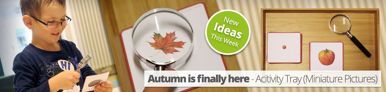 autumn-is-finally-here-acitivity-tray-miniature-pictures